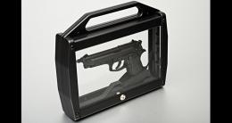 Gun Case Blaze