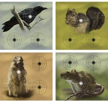 Varmint Targets