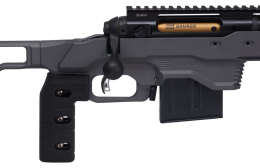 [Image: savage-arms-110-elite-precision-338-lapu...el-1_0.png]